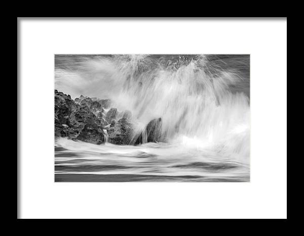 Coral Cove Framed Print featuring the photograph Coral Cove Park 0598 by Bob Neiman