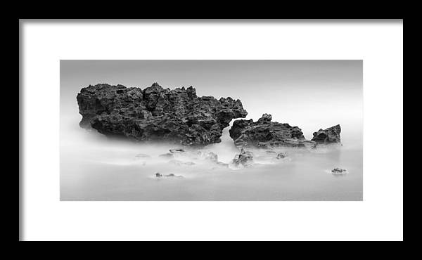 Coral Cove Framed Print featuring the photograph Coral Cove Park 0606 by Bob Neiman