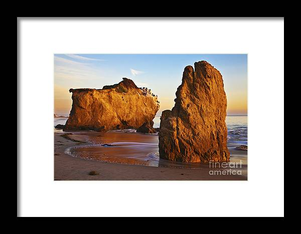 Beaches Framed Print featuring the photograph Cormorant Roost Before Sundown by Greg Clure