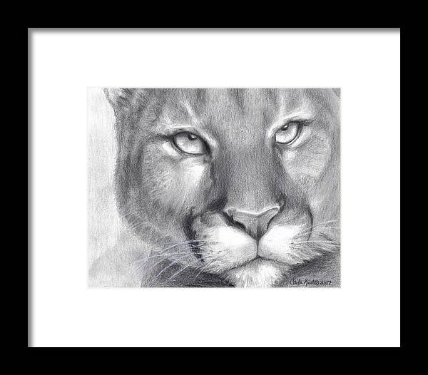 Cougar Framed Print featuring the drawing Cougar Spirit by Carla Kurt