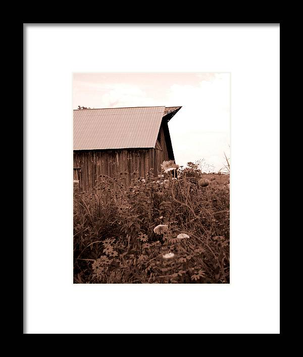 Barn Framed Print featuring the photograph Country Barn by Audrey Venute