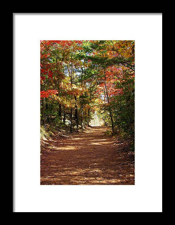 Fall Framed Print featuring the photograph Country Path by Ralph Perdomo