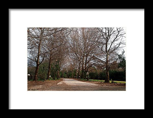 Country Framed Print featuring the photograph Country Road by Arik Baltinester
