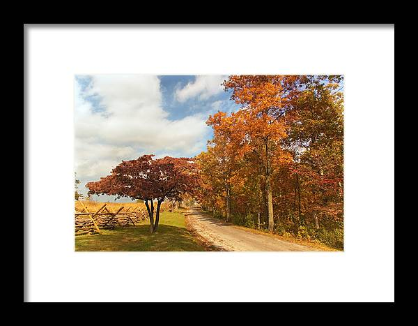 Country Framed Print featuring the photograph Country Road by Mick Burkey