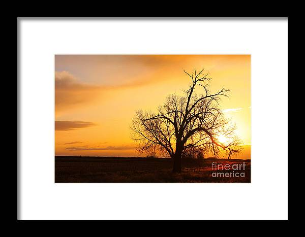 Sunrise Framed Print featuring the photograph Country Sunrise by James BO Insogna