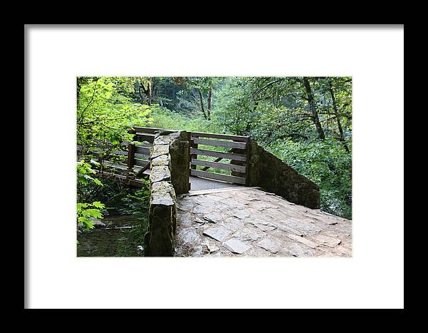 Landscape Framed Print featuring the photograph Country Walk by Alice Eckmann