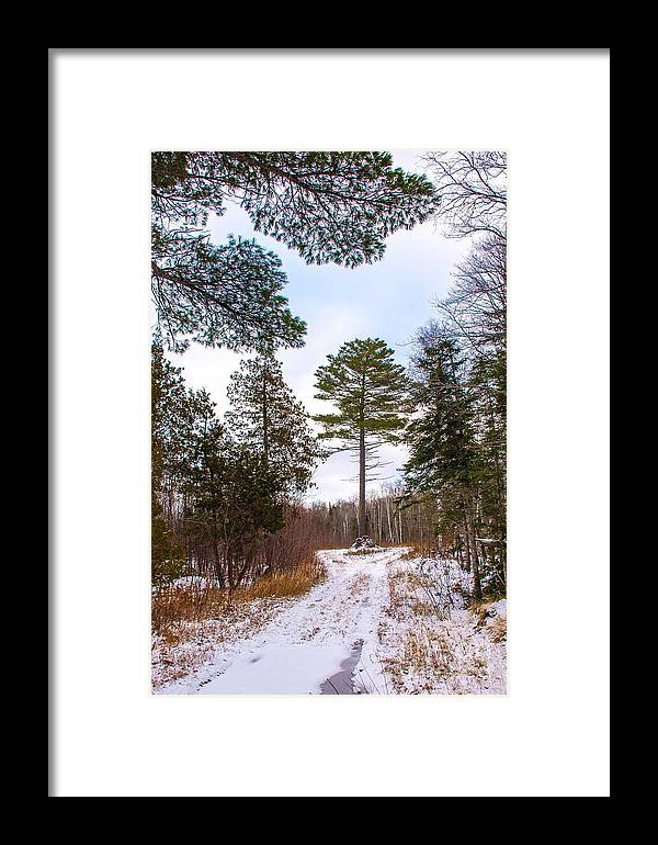 Snow Framed Print featuring the photograph Country Winter 14 by Wesley Farnsworth