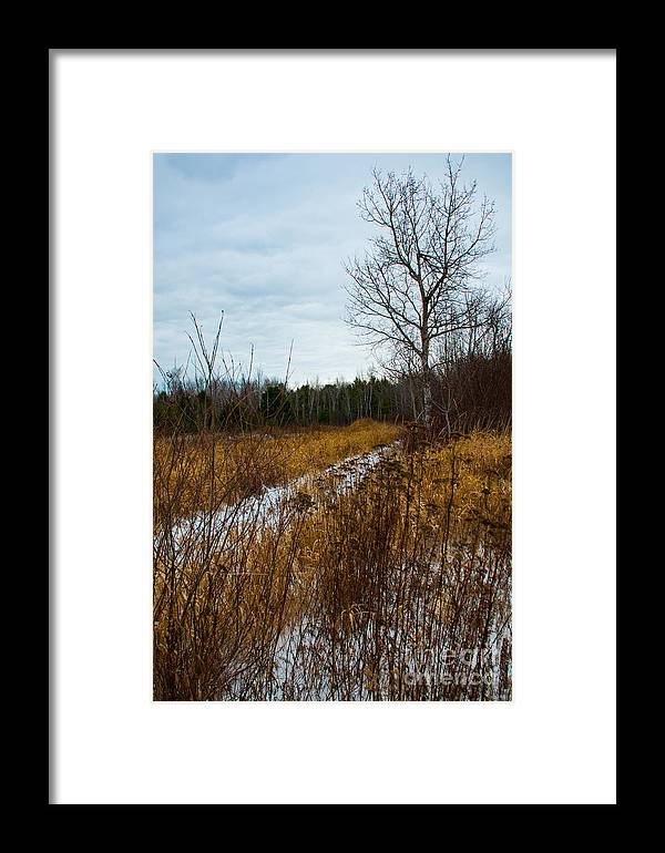 Snow Framed Print featuring the photograph Country Winter 4 by Wesley Farnsworth
