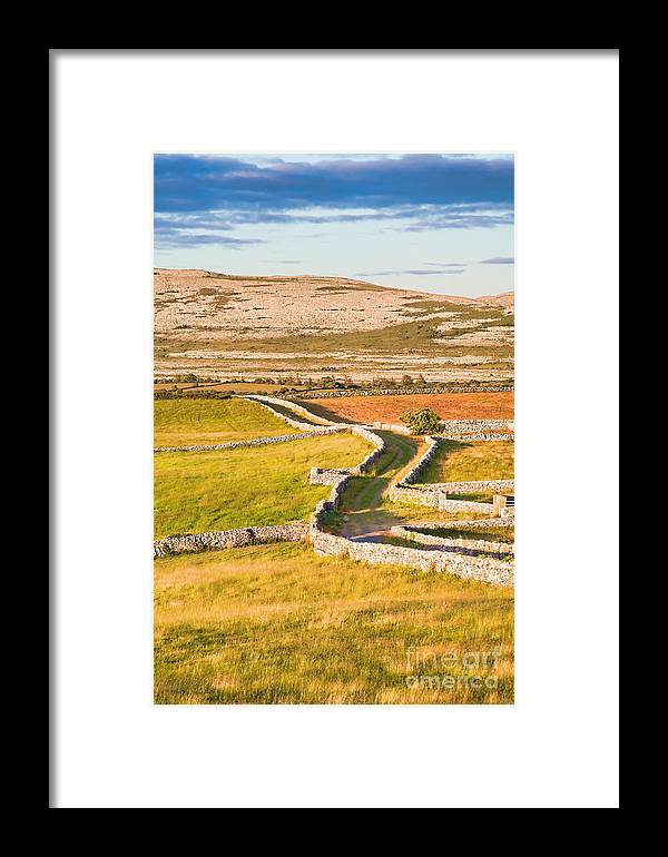 Road Framed Print featuring the photograph Countryside Road by Gabriela Insuratelu