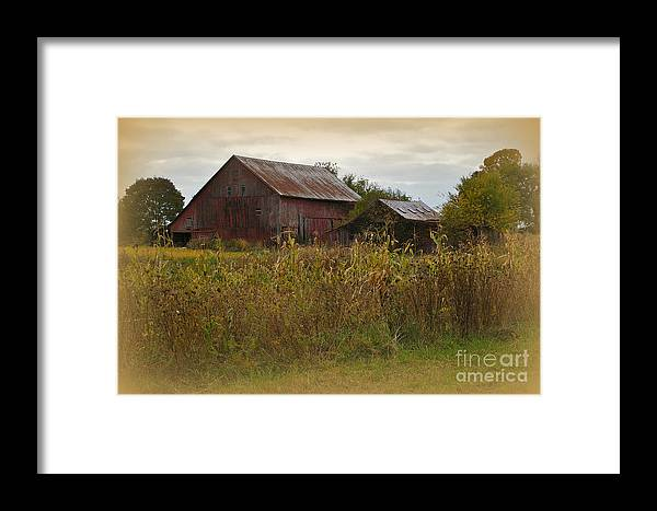 Barn Framed Print featuring the photograph Countryside by Terri LeSaint-Keller