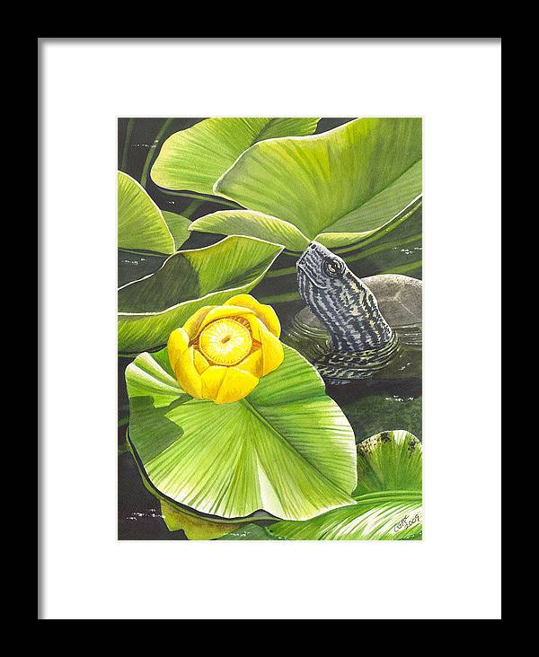 Lily Framed Print featuring the painting Cow Lily by Catherine G McElroy