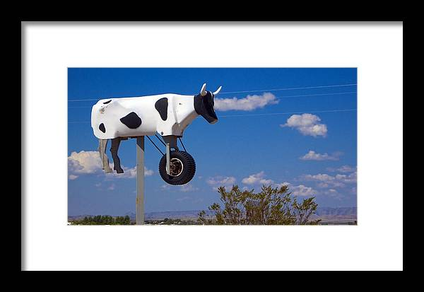 Cow Framed Print featuring the photograph Cow Power by Skip Hunt