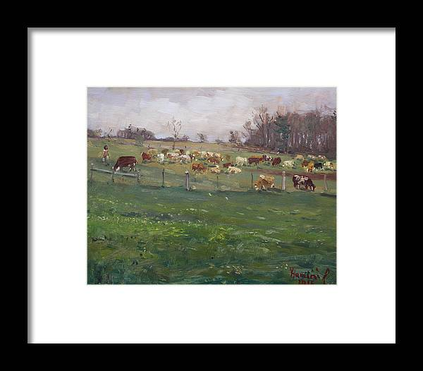 Cows Framed Print featuring the painting Cows In A Farm, Georgetown by Ylli Haruni
