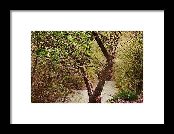Dreamy Framed Print featuring the photograph Cozy Stream in American Fork Canyon Utah by Colleen Cornelius