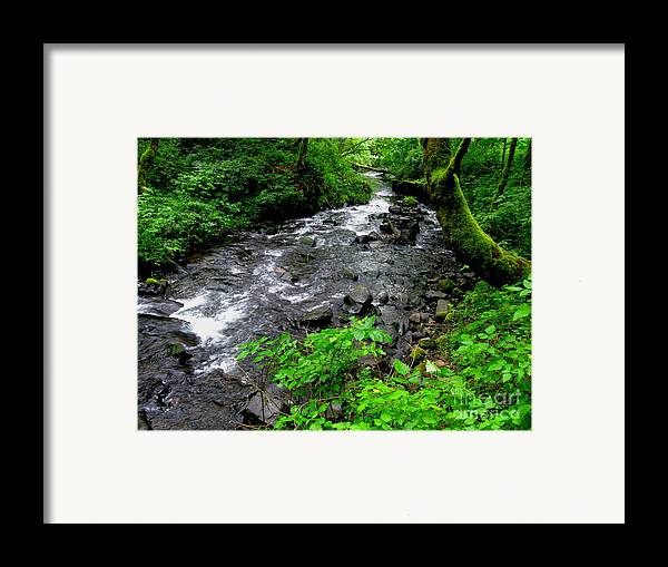 River Framed Print featuring the photograph Creek Flow by PJ Cloud