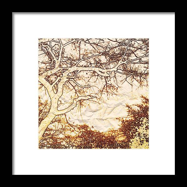 Day Framed Print featuring the photograph Crispy Day by Chris Fulks