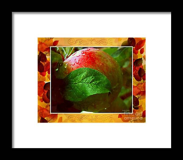 Art Framed Print featuring the photograph Crispy by Linda Galok