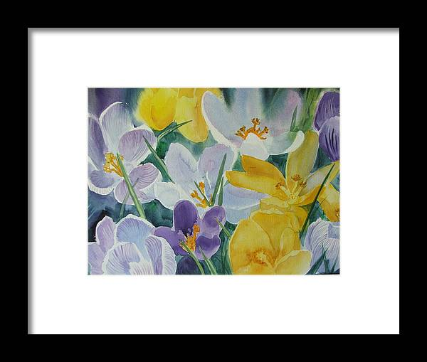 Spring Flowers Framed Print featuring the painting Crocus Circus by Dianna Willman