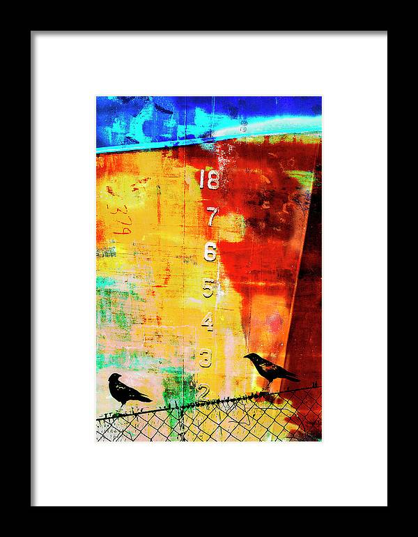 Mixed Media Framed Print featuring the mixed media Crows By The Numbers Mixed Media by Carol Leigh