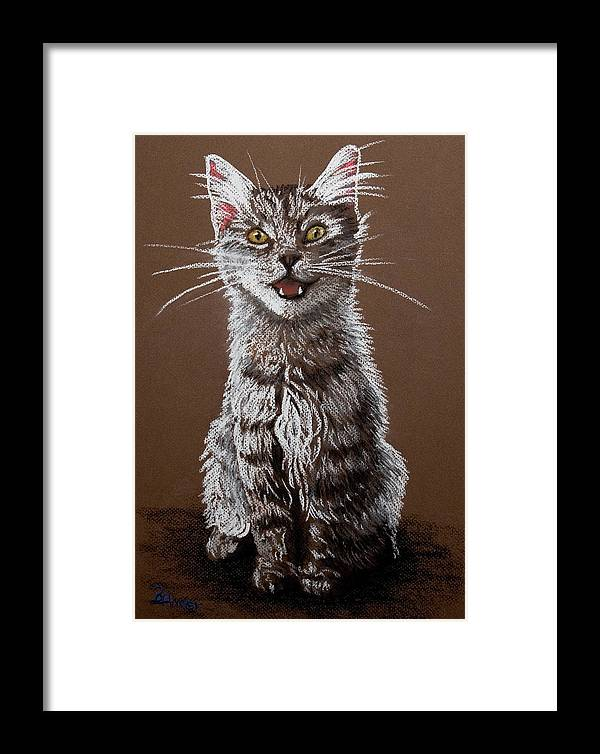 Maine Coon Cat Framed Print featuring the pastel Cry Baby by Brent Ander