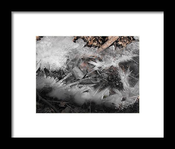 Ice Framed Print featuring the photograph Crystal Clamshell by john Kuti
