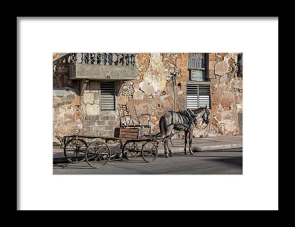 Cuban Horse Power; Cuban; Horse; Power; Horse And Carriage; Carriage; Hp; Cuba; Photography & Digital Art; Photography; Photo; Photo Art; Art; Digital Art; 2bhappy4ever; 2bhappy4ever.com; 2bhappy4evercom; Tobehappyforever; Framed Print featuring the photograph Cuban Horse Power FC by Erron