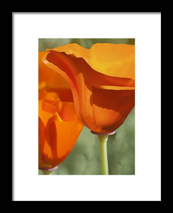 California Framed Print featuring the digital art Cup Of Gold by Sharon Foster
