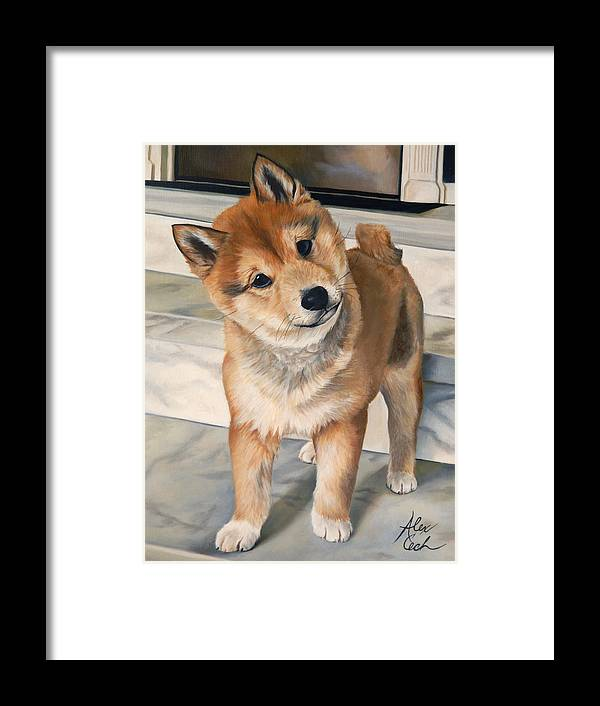 Dog Framed Print featuring the painting Curious Shiba Inu by Alexandra Cech