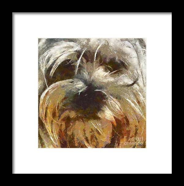Dog Framed Print featuring the painting Curly by Dragica Micki Fortuna