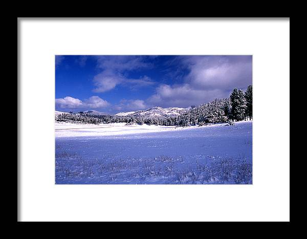 State Park Framed Print featuring the photograph Custer State Park by Barry Shaffer
