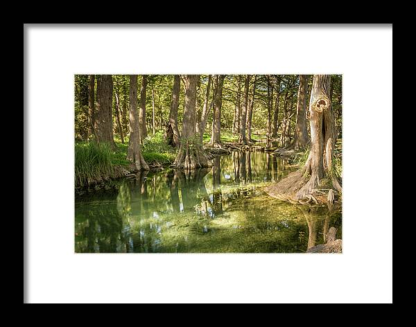 Cypress Creek Framed Print featuring the photograph Cypress Creek by Jim Allen