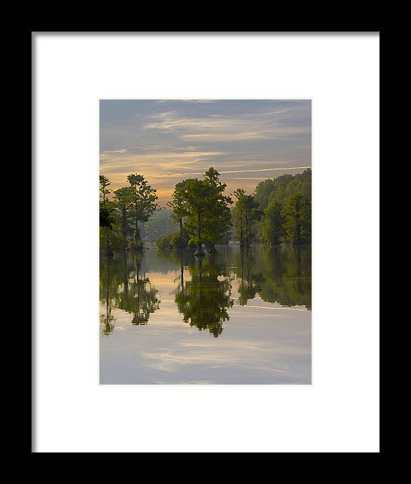 Greenfield Park And Gardens Framed Print featuring the photograph Cypress In Lake Reflection by Paul Boroznoff