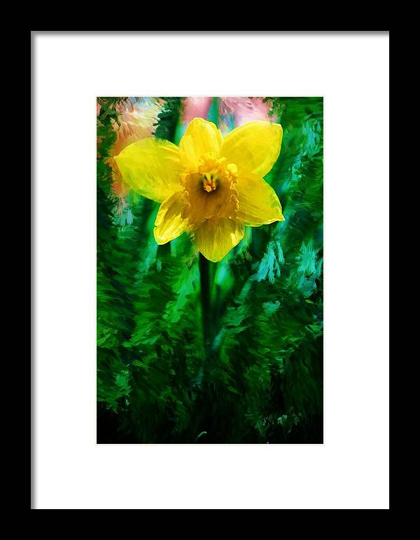 Abstract Framed Print featuring the photograph Daffy Dill by David Lane