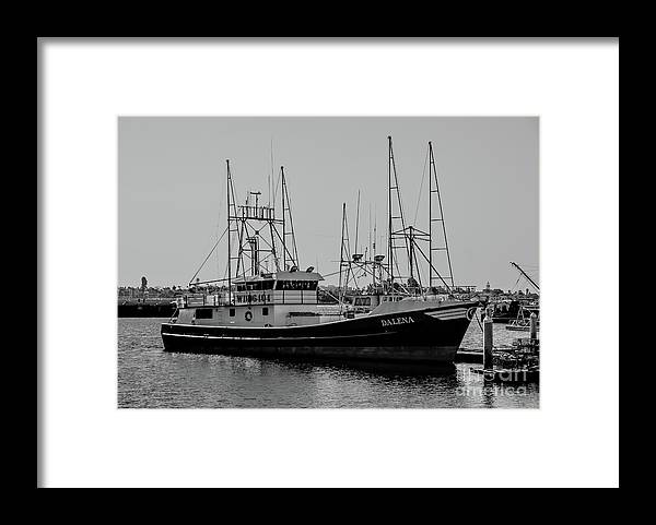 Dalena Framed Print featuring the photograph Dalena Black And White by Richard Booth