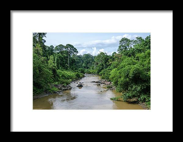 Landscape Framed Print featuring the photograph Danum Valley by Richard Parsons