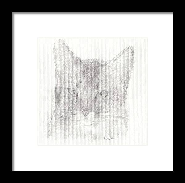 Cat Framed Print featuring the drawing Daphne by Bari Titen
