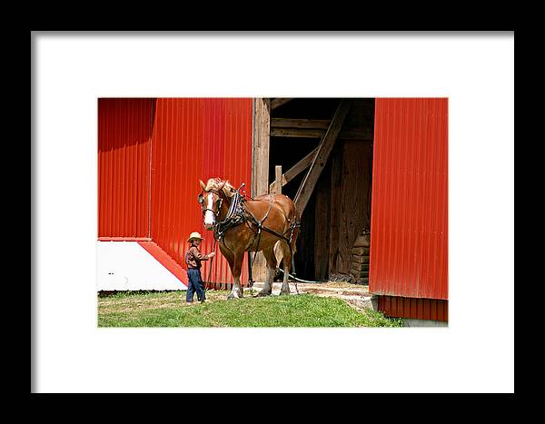 Amish Framed Print featuring the photograph David And Goliath Number Two by Brian M Lumley