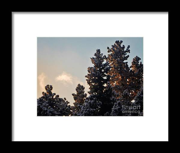 Winter Framed Print featuring the photograph Dawn Light by CL Redding
