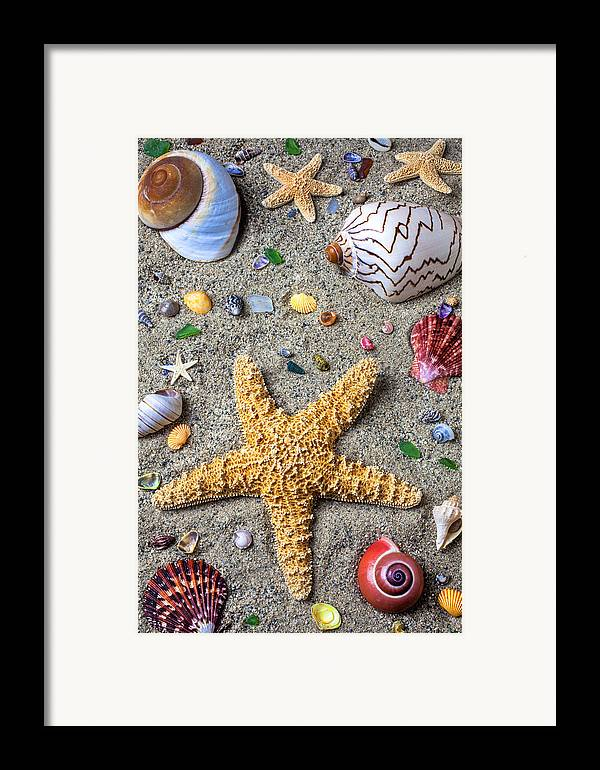 Starfish Framed Print featuring the photograph Day At The Beach by Garry Gay