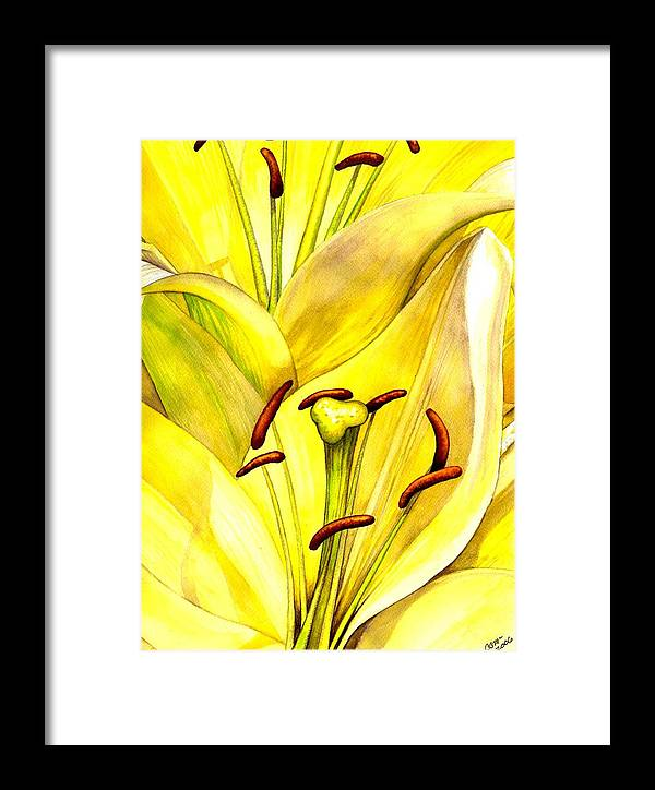 Lily Framed Print featuring the painting Daylily by Catherine G McElroy