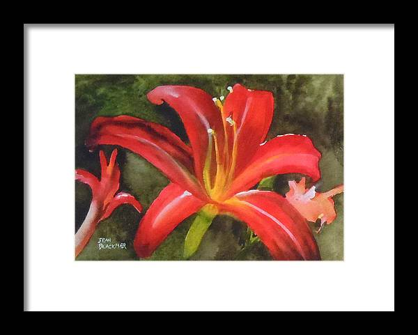 Red Framed Print featuring the painting Daylily Study IV by Jean Blackmer