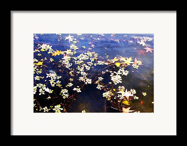 Water Framed Print featuring the photograph Death Among The Leaves by Kenna Westerman