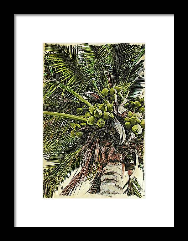 Alicegipsonphotographs Framed Print featuring the photograph Debbie's Coconuts by Alice Gipson