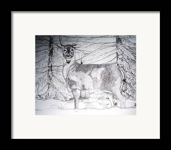 Whitetail Framed Print featuring the drawing Deep Snow by Debra Sandstrom
