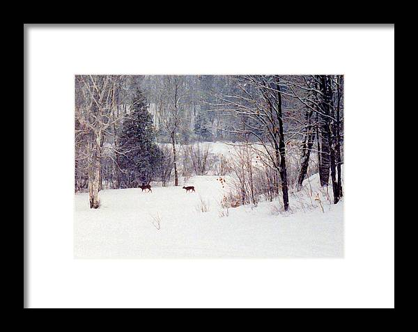 Snow Framed Print featuring the digital art Deer By The Forest Db by Lyle Crump