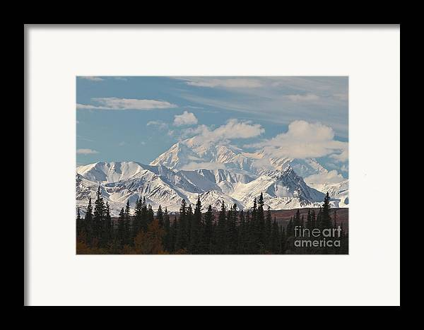 Denali Framed Print featuring the photograph Denali In Broad Pass by Donna Quante