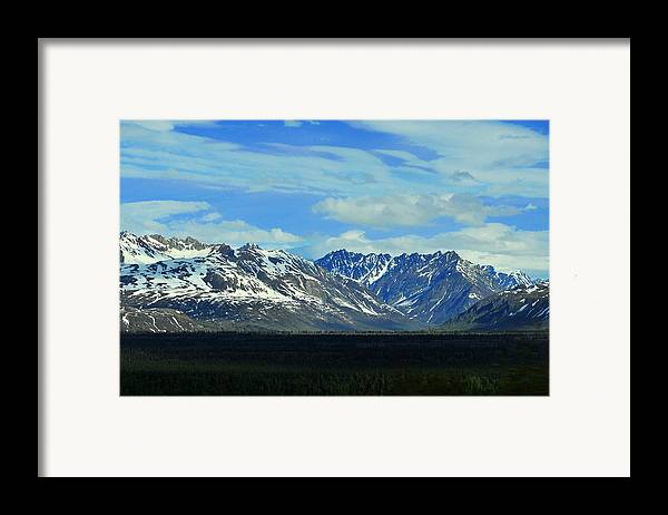 Denali Framed Print featuring the photograph Denali Valley by Keith Gondron
