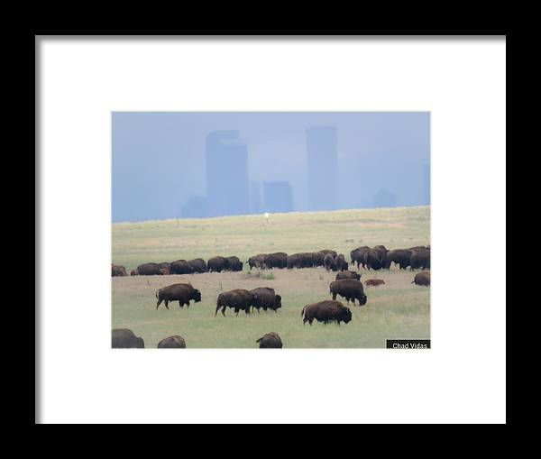 Colorado Framed Print featuring the photograph Denver Skyline by Chad Vidas