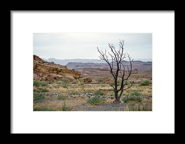 Utah Framed Print featuring the photograph Desert Colors by Margaret Pitcher