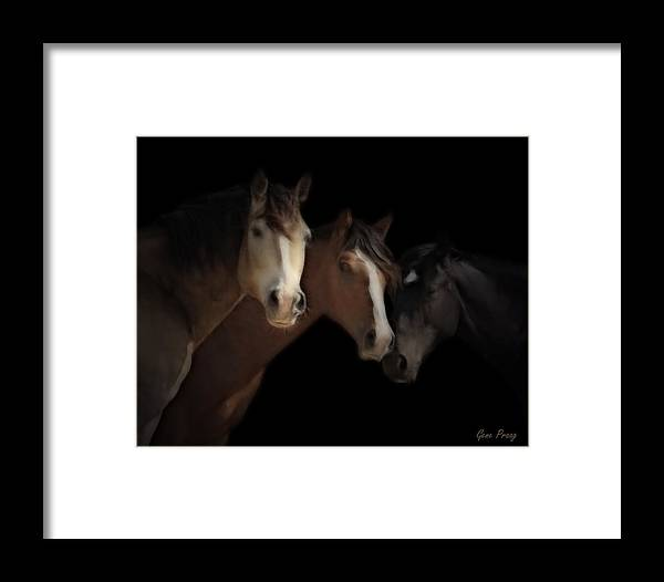 Mustang Framed Print featuring the photograph Desert Ghosts by Gene Praag